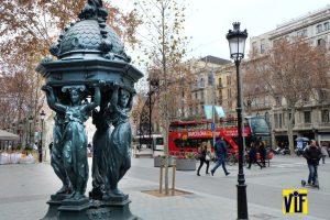 Revelado digital y analogico barato color vif Barcelona para aficionados y profesionales